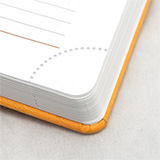 Diaries with corner perforation